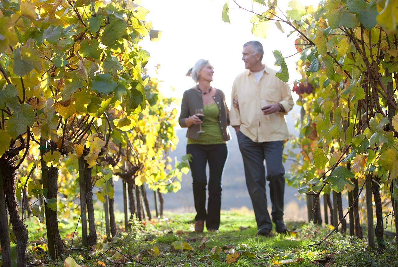 Couple walking through winery